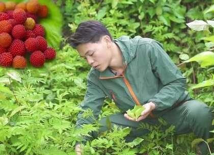 春天山上有好多野果子长出来了,各种颜色的都有,但最喜欢这种红彤彤有点酸甜的野果,你知道这个野果叫什么名字吗?#美食##野果##我要上热门#