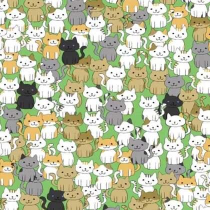 #才才游戏配音秀##我的猫咪在哪儿##游戏#今天我生日了 晚上直播间来领红包哈