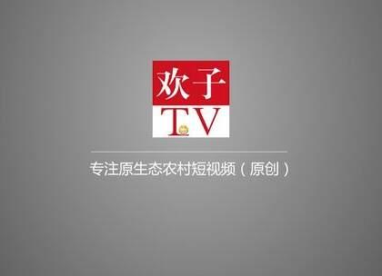 永州血鸭是一种地道的美食,欢子走进千村万户来到永州曾哥家学做血鸭,鸭脖子抹了好几遍还活蹦乱跳,现场的人都笑翻了。欢子TV出品#欢子TV#