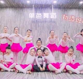 少儿拉丁初级班的宝贝们带来恰恰初级组合,甜美的笑容,挺力的指尖,每一处细节都在展示着#宝宝#们的魅力。#少儿拉丁舞##舞蹈#咨询卫星:danse112