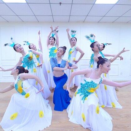 #我要上热门##派澜舞蹈##碧波孔雀#哈 好一群得意的孔雀 迷的我不要不要的 千万不要说身材好的才能跳舞 就是因为我们坚持舞蹈 所以身材越来越棒!😱@美拍小助手 @舞蹈频道官方账号