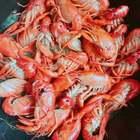 #美食#今年第一次煮小龙虾哦,非常的美味、辅料:青椒、蒜头、姜、紫苏、葱、八角、盐、料酒 酱油 耗油、就这些比较简单!#小龙虾##家常菜#