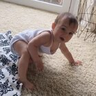 #宝宝##育儿##荷兰混血小小志&柒#发现小柒丫头现在听得懂不可以了!嘻嘻嘻... ... 差2天9个月喽!