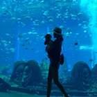 我拥抱着爱,在梦想中醒来❤️超美的水族馆,仿佛置身其中~小棉@小棉的成长日记 看呆了,妈妈也被震撼到了~#宝宝##小棉成长记##海洋馆#