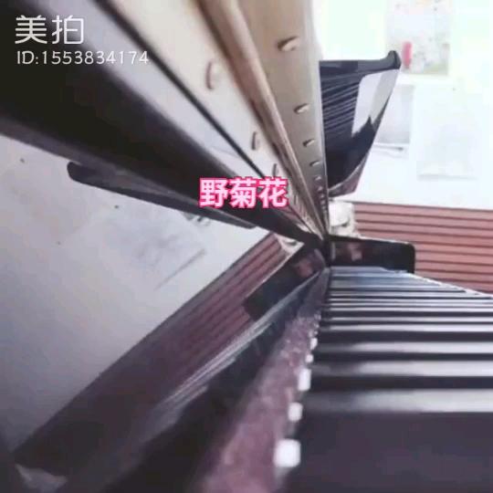 """美拍# 视频:""""北风吹 #钢琴曲# """",点此播放>>  l 美拍  c"""