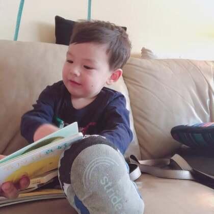 #宝宝##宝宝读绘本#小菠萝很喜欢小鸡球球🐤这套书,百读不厌。
