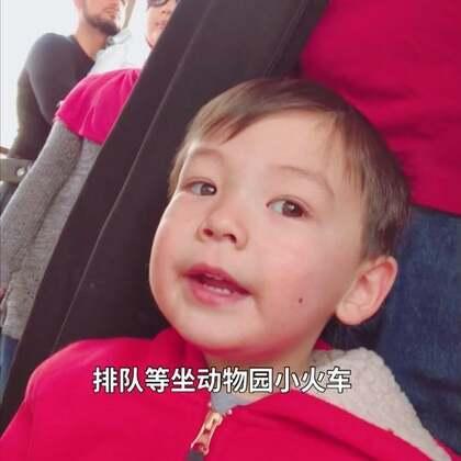 #宝宝##我的假期日记#动物园的自闭症儿童关注日,全园免票,天气不错,好多小朋友来,停车场车位紧张。小菠萝呢,对动物的兴趣比不上推推车。当然最激动的还是坐小火车。走的时候都哭了,说还要再来。