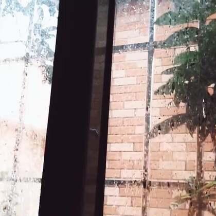 #美拍10秒电影#又下雨了