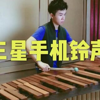 乔峰-安德鲁的美拍:马林巴木琴和长笛beatbox华为主板手机串码图片