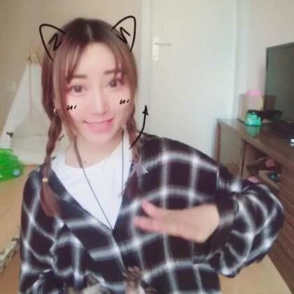 #我的全身都会响##精选##宠物#尴尬的带猫合演 尴尬的刘海。。。卖猫卖猫??????