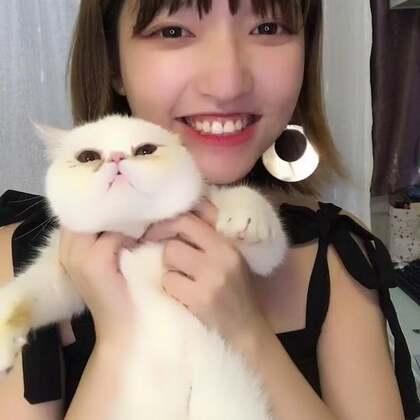 #亚洲四大首富# 因为我有招财猫!