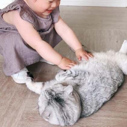 再欺负它我就欺负你#宠物##宝宝#