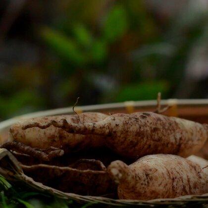 #美食#咸萝卜干,咸的萝卜干是最好配稀饭了。#我要上热门@美拍小助手##海南三亚#