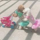 姐妹一起去购物😊#宠物##精选##购物分享#