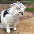 你那里下雨了么