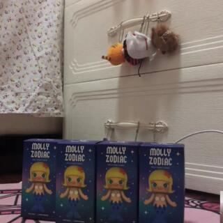 小更新一下,4个molly星座。#拆盲盒##一起拆盲盒#