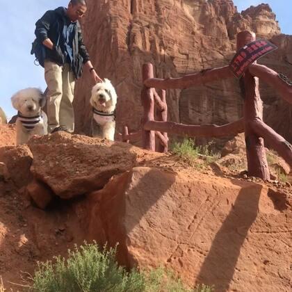 #宠物#库车 天山神秘大峡谷(1)录了好多 懒得剪了 有点长 随便看看吧😄