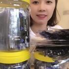 原味大桶海苔昨天已经上架了https://item.taobao.com/item.htm?id=569911672647,每桶96包,每包2片,58元3桶包邮,99元6桶包邮!温馨提示:每次吃多少拿多少,瓶盖要拧紧,以免回潮!
