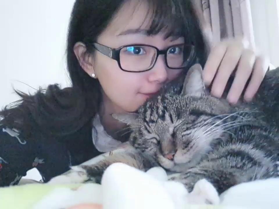 早上怒揉三只猫哈哈#猫星人##宠物##much love#