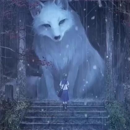 看完这个视频我觉得布宝就是一只狐狸!🆒!#精选##宠物#