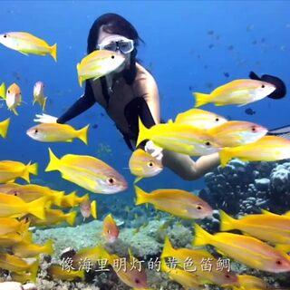 """你信吗?我好像到了""""亚特兰蒂斯王国"""",我的心里像是掀起了一场海啸。#旅行vlog##带着美拍去旅行#"""