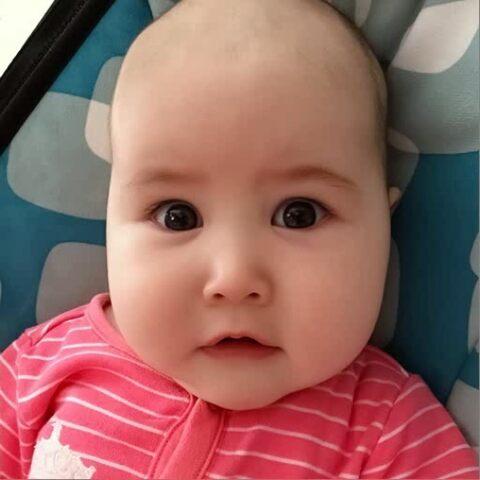 【Babybarak美拍】#寶寶長相預測#長大后你就變成了...