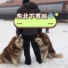 下雪啦#日常##熱門#