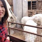 打卡北京新SKP-S 神奇藝術館,不對,準確說應該是商場。有趣,很奇特,超未來的地兒,我已經忘記購物,一直問這是啥那是啥??超級適合遛娃,會磨牙咩咩叫的綿羊群和各種科學小實驗,饅頭根本玩不夠,一個寶藏商場。這是年前庫存,等疫情過去,推薦你們來。還有網紅面店,巨好吃墻推 #逛拍#?