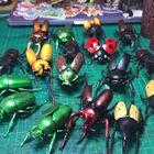 #拆盲盒#推薦昆蟲玩具??
