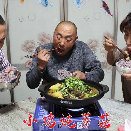 东北经典菜#小鸡炖蘑菇##东北菜##农村美食#