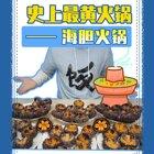 一千塊系列之海膽火鍋!味道濃郁鮮甜超級美味!就是這畫面......#美食#