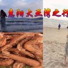 #vlog#【惠州大亞灣】———人生就是要不斷的走走停停、記錄你們愛看的日常  就當自己也日記 老了來回首往事 哈哈哈 大亞灣很小 沒什么好玩的 我們打算 今天出發雙月灣??