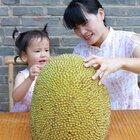 今天用最大的水果做了一道美食,大家来说说取个啥名呢?另外今年新梨做的秋梨膏已经好了,有不清楚的记得看置顶的视频哦#美食#