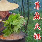 火锅这样吃才叫爽,整2斤荨麻一煮,吃着真带劲!#美食#
