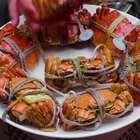 朋友送了8只陽澄湖大閘蟹,個個肥美,蟹黃滿滿,真過癮