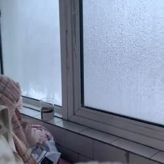 这就是东北吗???#下雪的快乐#