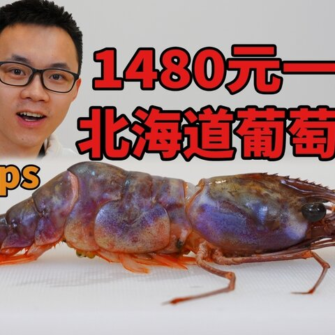 【在下李灿美拍】1480元一斤的葡萄虾,颜色太漂亮...