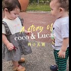 大家可以帮Lucas小朋友支支招吗?怎么才能把coco哄好??#co成长#